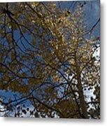 Leaves In The Sky Metal Print