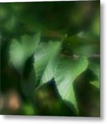 Leaves Of Serenity Metal Print