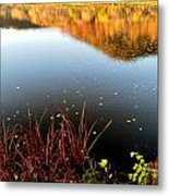 Leaves On The Lake Metal Print