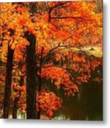 Leaves Over Water Metal Print by Joyce Kimble Smith