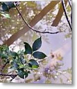 Leaves With Reflection Metal Print