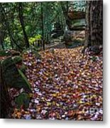 Ledges Overlook Trail 5 Metal Print