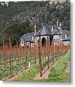 Ledson Winery And Vineyard In Late Winter Just Before The Bloom 5d22192 Metal Print by Wingsdomain Art and Photography