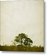 Left Alone In A Pasture Metal Print