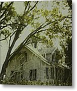 Left In The Trees Metal Print
