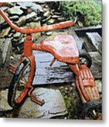 Left Out In The Rain Metal Print