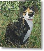 Leia Cat In Blueberries Metal Print