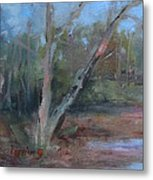 Leiper's Creek Study Metal Print