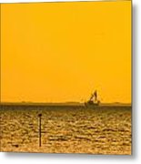 Lemon Fisher Metal Print