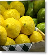 Lemons And Limes Metal Print by Julie Palencia