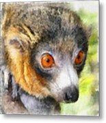 Lemur 004 Metal Print