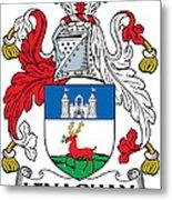 Lenaghan Coat Of Arms Irish Metal Print