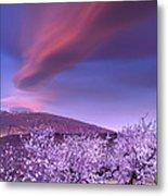 Lenticular Clouds Over Sierra Nevada Metal Print