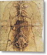 Leonardo: Anatomy, C1510 Metal Print