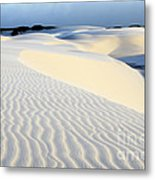 Leoncois Maranhenses Beauty Of Sand Metal Print
