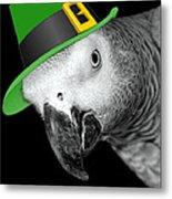 Leprechaun Parrot Metal Print