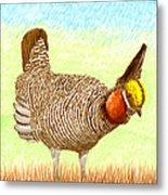 Lesser Prairie Chicken Metal Print