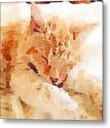 Let Sleeping Cats  Metal Print