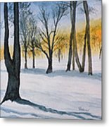 Letchworth State Park Ny Metal Print