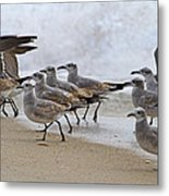 Let's Blow This Joint Metal Print by Betsy Knapp