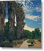 Let's Walk This Path Together Metal Print