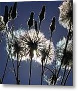 Letting Go Metal Print