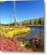 Lewis River Fall Metal Print