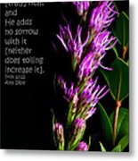 Liatris On Black II Metal Print