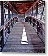 Liberty Bridge Swan Lake Metal Print