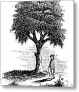 Liberty Tree, 1765 Metal Print