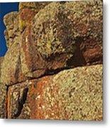 Lichen On Boulders Metal Print