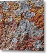 Lichen On Sandstone Metal Print