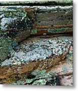 Lichen On The Rocks-1 Metal Print