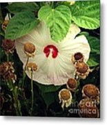 Life And Death In The Garden Metal Print