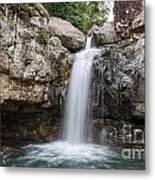 Life Flows Metal Print by Shannon Rogers