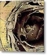 Life IIi Metal Print by Yanni Theodorou