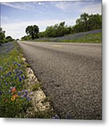 Life Is A Highway  Metal Print by Lynn Bauer