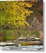 Life On The River Metal Print by Bill Wakeley
