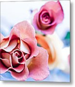 Light And Roses Metal Print
