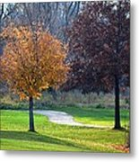 Light And Shadows In Autumn Metal Print