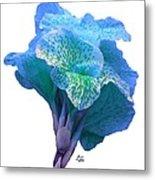 Light Blue Iris Metal Print