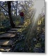 Light For The Path Metal Print
