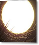 Light From The Moon Metal Print