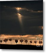 Light From The Sky Metal Print
