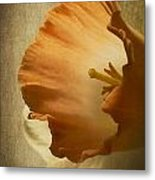 Light From Within Metal Print