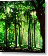 Light In The Jungles. Viridian Greens. Mauritius Metal Print