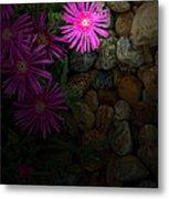 Light In The Rock Garden Metal Print