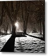 Light In The Shadows Metal Print