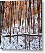 Light In The Valley Metal Print