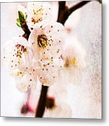 Light Of Spring 3 Metal Print